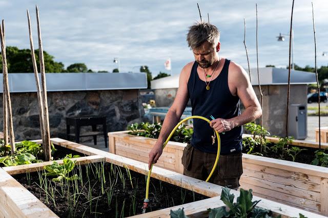 Johannes Wätterbäck vattnar på Nordanby ängs trädgård, Farbror Grön