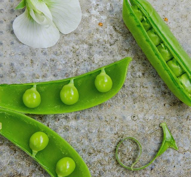 Ärtskidor med ärtor ärtblomma Farbror Grön
