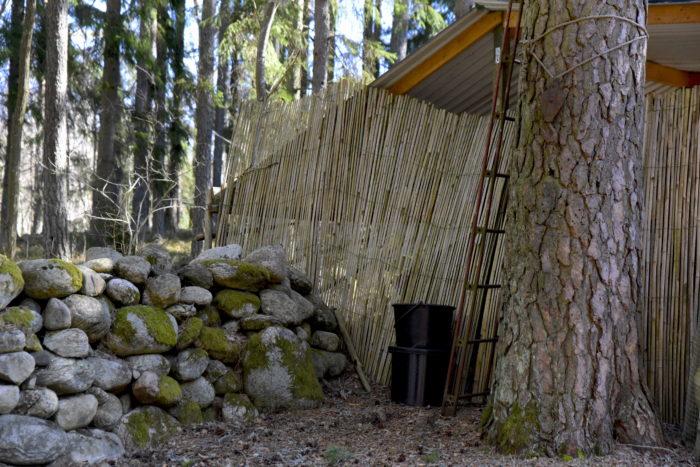 vindskydd bambu