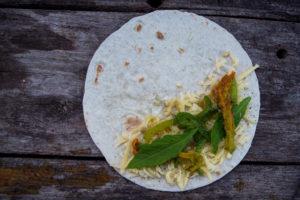 Quesedillas med epazote och zucchiniblommor
