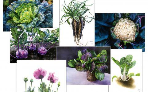 Bilder på posters. Ätbara växter från boken Flera fingrar gröna