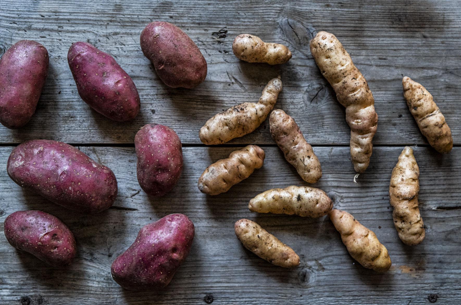 Vår bästa potatis är korad!